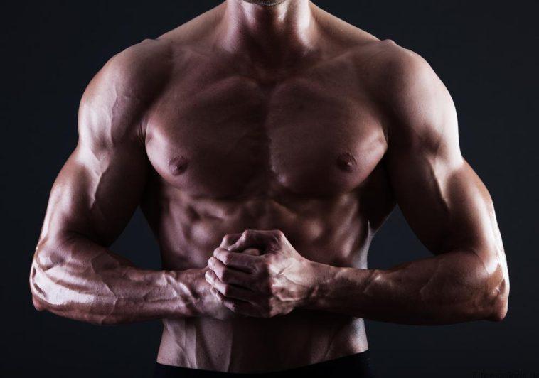 Die besten Übungen Für Die Brust - Copyright: Shutterstock