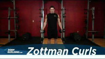 zottman curl 364x205 - Zottman Curl